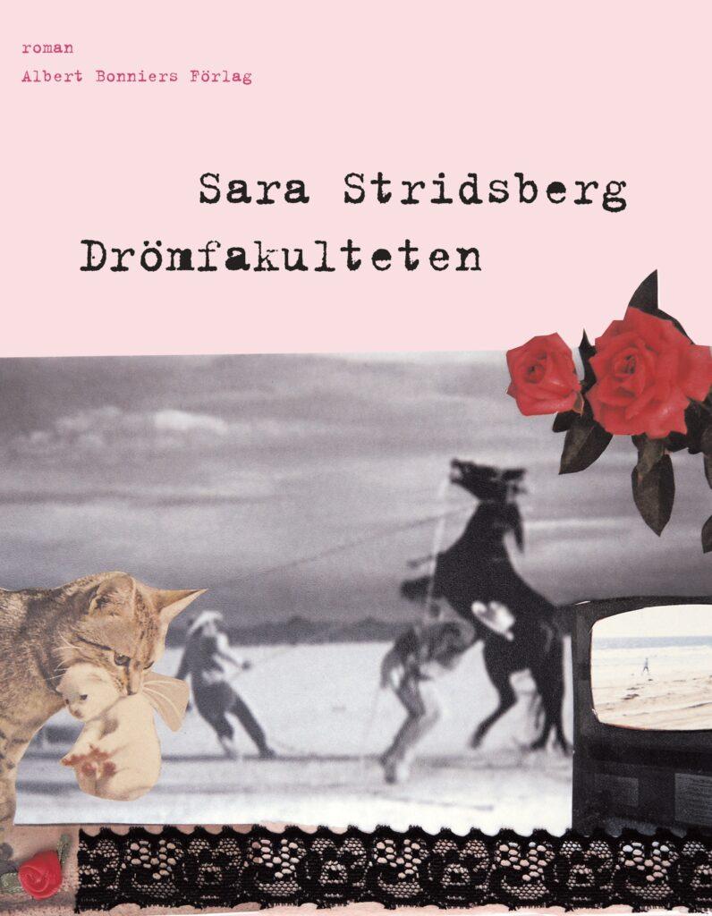 Bokomslag drömfakulteten av Sara Stridsberg